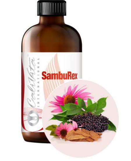 SambuRex (extract soc/echinaceea) - 240 ml