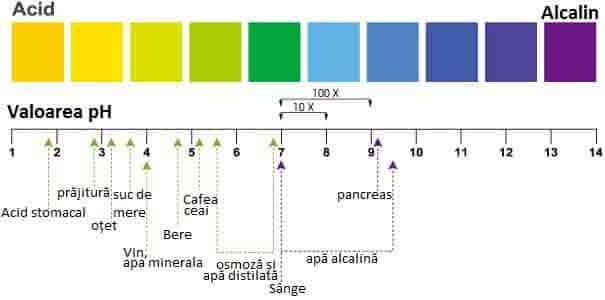 Ph Acid vs Ph Alcalin