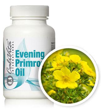 evening primrose oil calivita